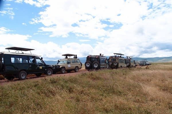 Safari jeeps llined up in the Ngorongoro Crater