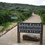 What to See and Do at the Cape of Good Hope, South Africa