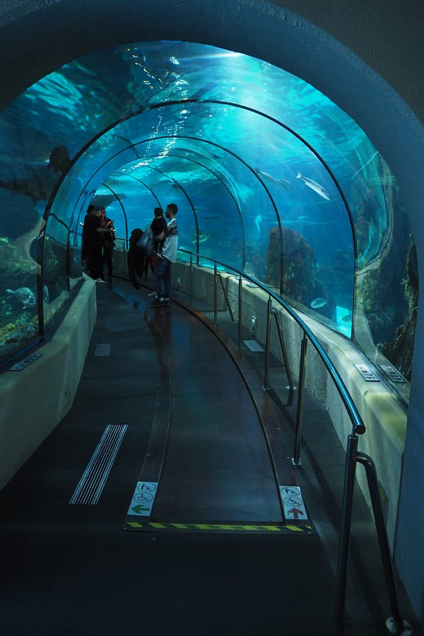 Aquarium Barcelona tunnel, Spain